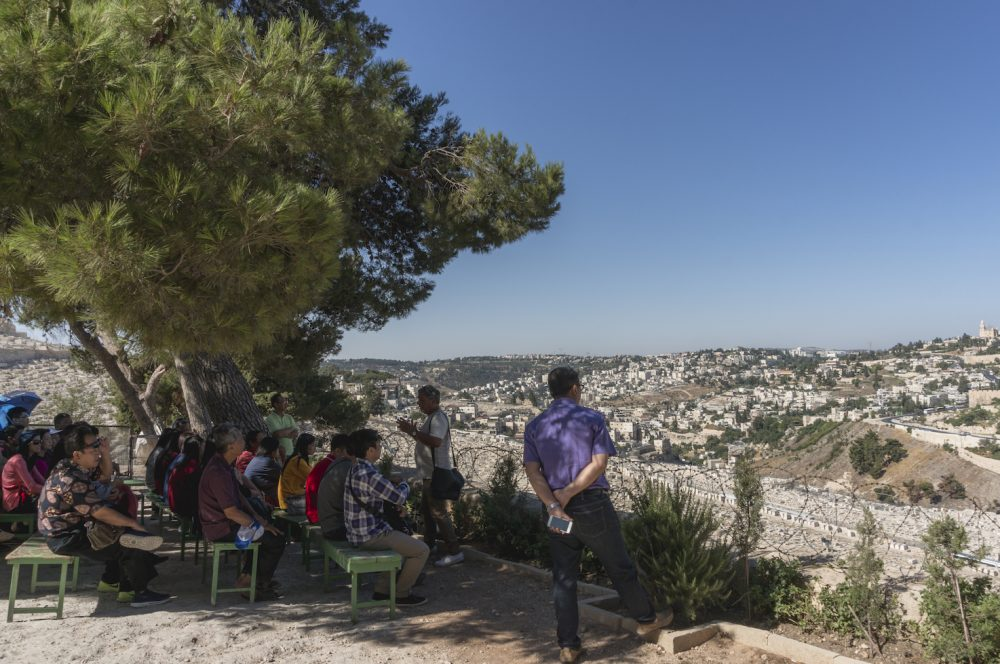 Jerusalem City View from Dominus Flevit Church