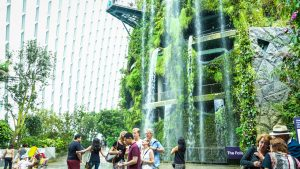 gardens-by-the-bay-singapore-Cloud-forest