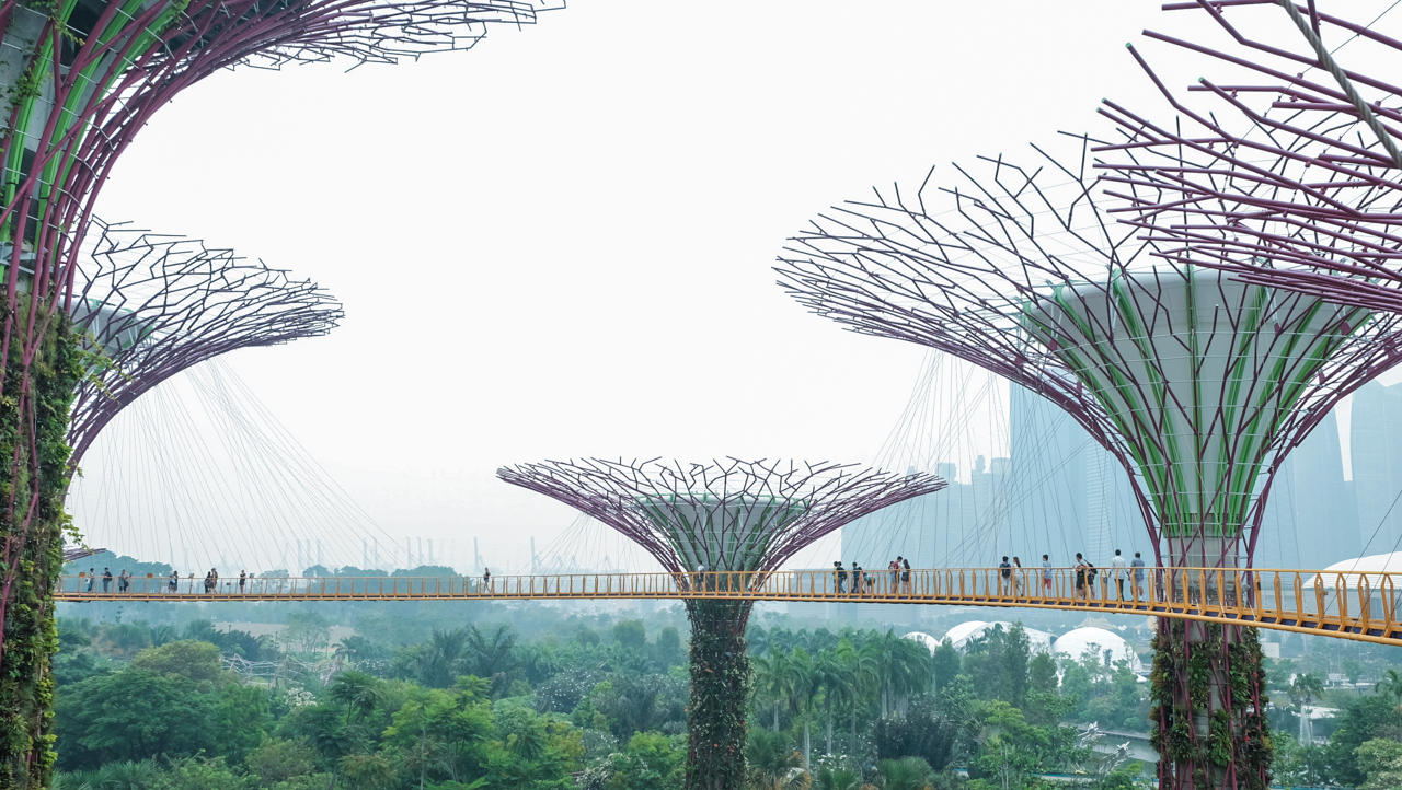 supertrees-groove-ocbc-skywalk-14