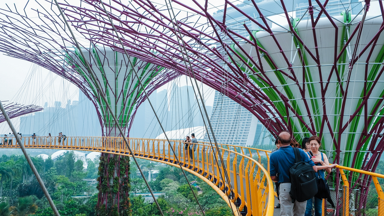 supertrees-groove-ocbc-skywalk-15