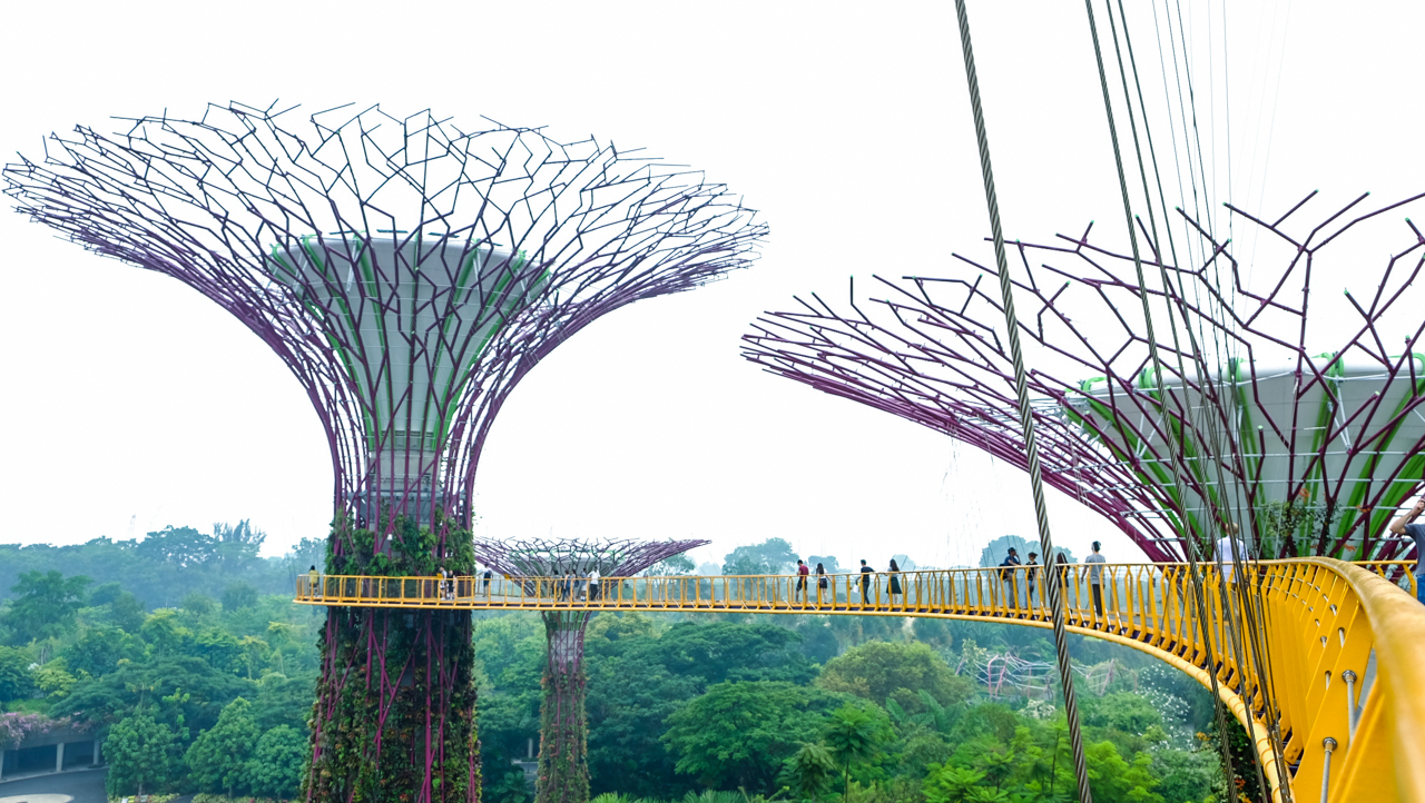 Supertrees Groove - Gardens by The Bay